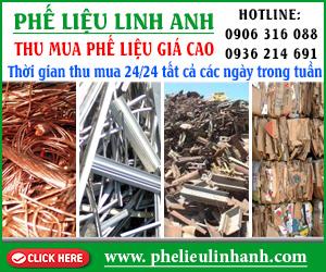C&#417 S&#7903 Ph&#7871 Li&#7879u Linh Anh