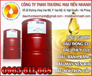 Công Ty TNHH Th&#432&#417ng Mai Ti&#7871n Nhanh