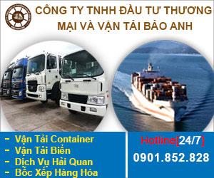 Công Ty TNHH &#272&#7847u T&#432 Và V&#7853n T&#7843i Châu Long