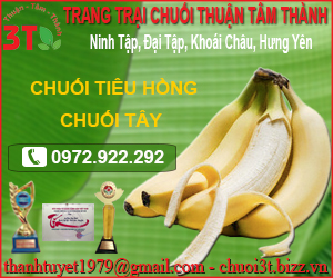 Trang Tr&#7841i Thu&#7853n Tâm Thành
