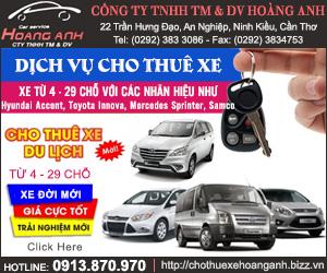 Công Ty TNHH Th&#432&#417ng M&#7841i Và D&#7883ch V&#7909 Hoàng Anh