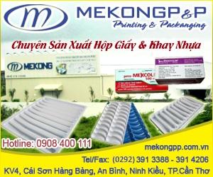Công Ty TNHH In Mekong