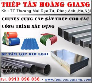 Công Ty TNHH Thép Tân Hoàng Giang