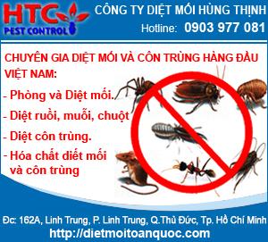 Công Ty TNHH MTV D&#7883ch V&#7909 Hùng Th&#7883nh