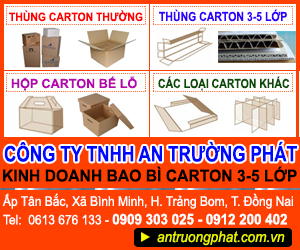 Công Ty TNHH An Tr&#432&#7901ng Phát