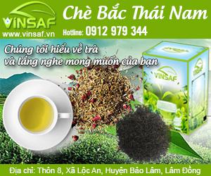 Công Ty TNHH Chè B&#7855c Thái Nam