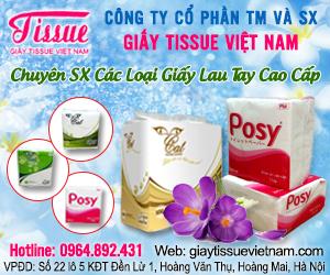 Công Ty S&#7843n Xu&#7845t Gi&#7845y Tissue Vi&#7879t Nam