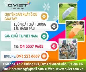 Công Ty Cổ Phần Ô Việt