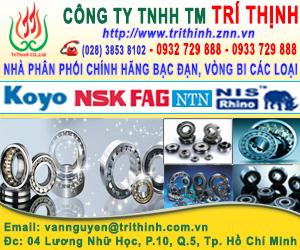 CÔNG TY VÒNG BI TRÍ TH&#7882NH